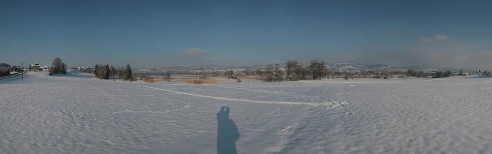 Pfäffikersee 2010 -3