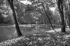 Pfälzer Silbersee