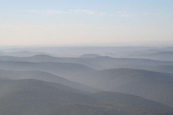 Pfälzerwald aus der Luft