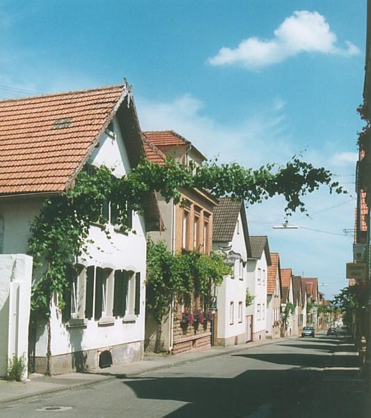 Pfälzisches Wein-Dorf