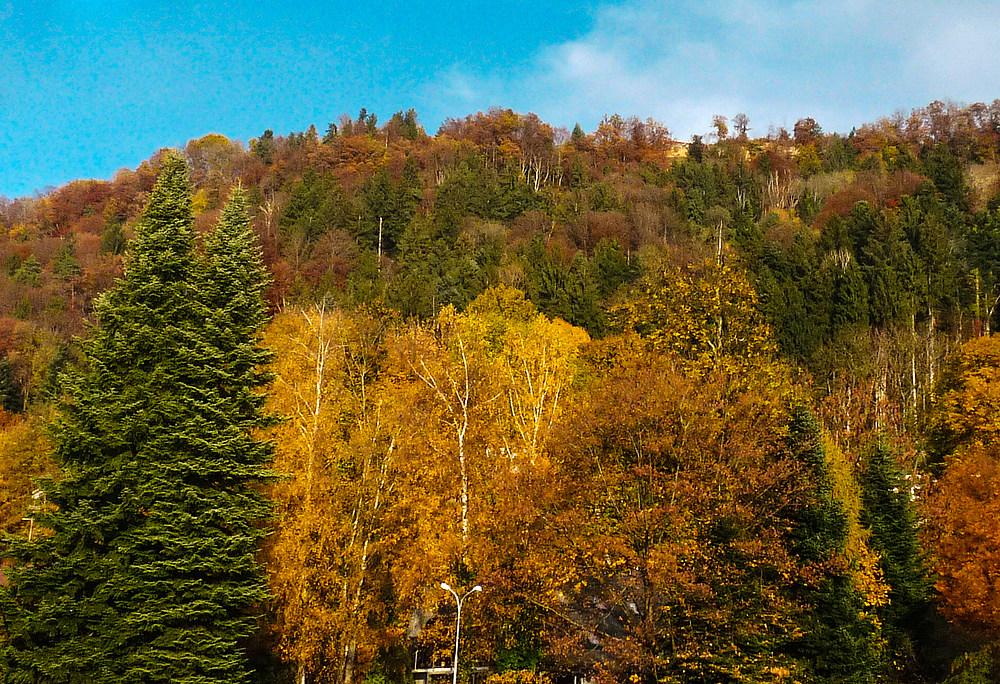Pfänder bei Bregenz im Herbst