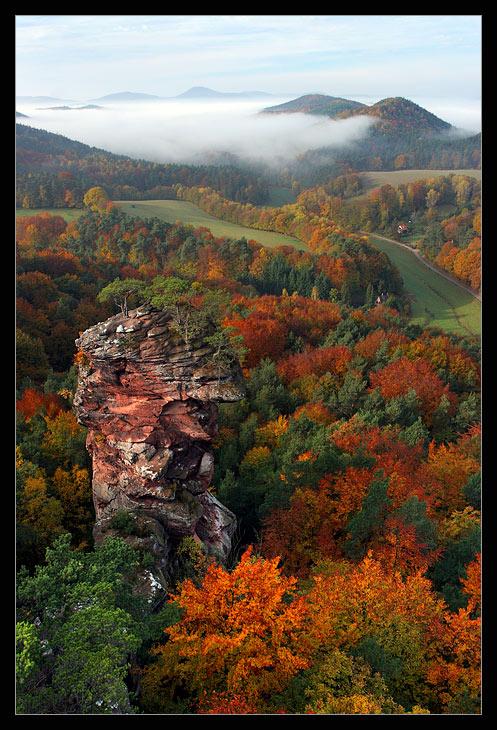 Pfalz in Herbst