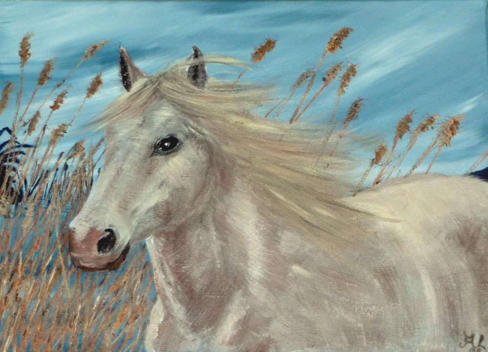 Pferd am See