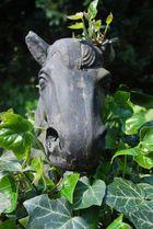 Pferd in Efeu