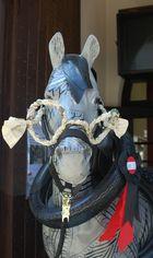 Pferd mit Brille