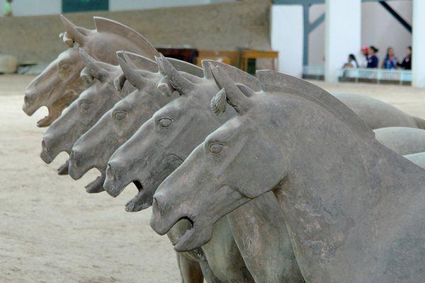Pferde der Terracotta Armee
