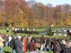 Pferde, Reiter, Zuschauer, Herbst