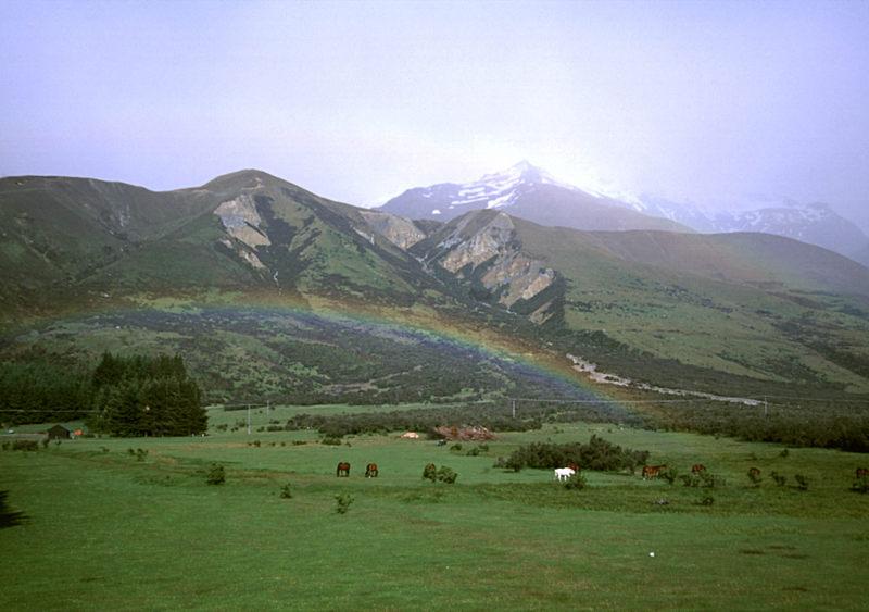 Pferde unterm Regenbogen