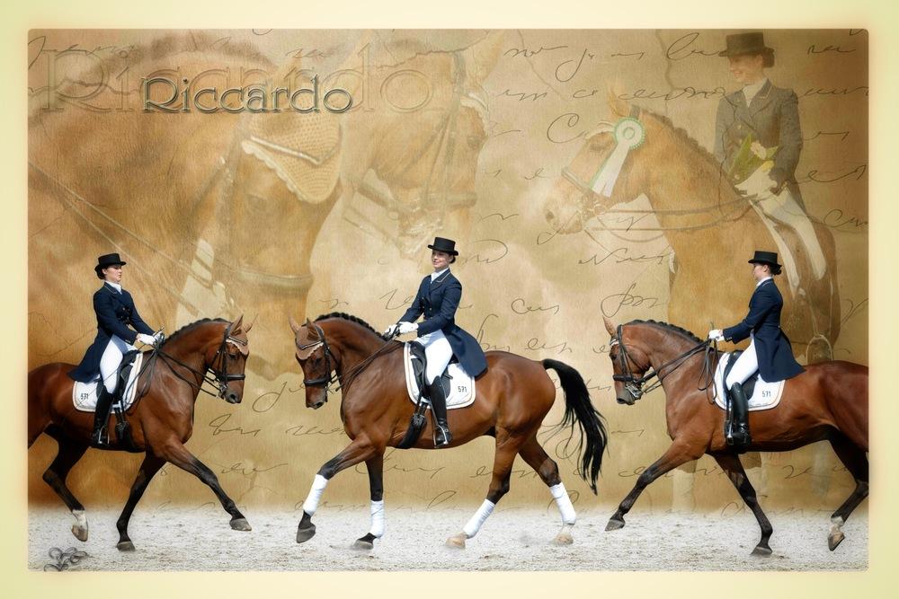 Pferdecollage Riccardo