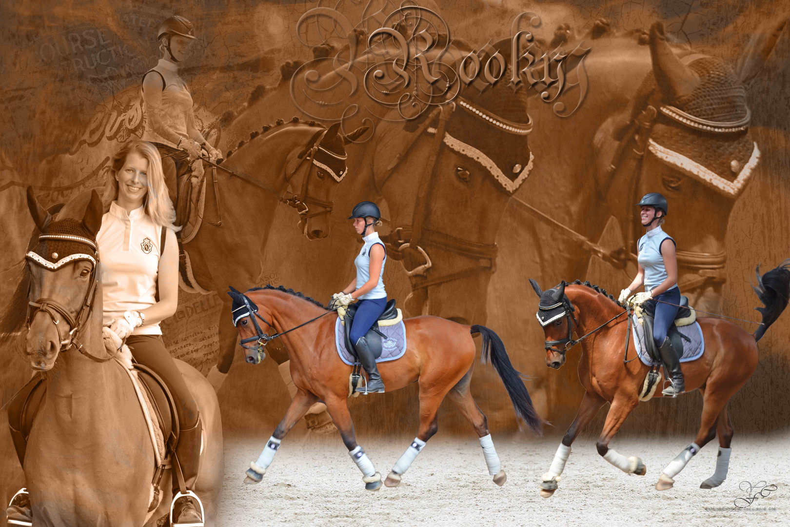 Pferdecollage Rooky