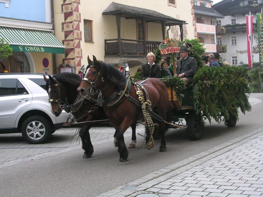 Pferdefest am Wolfgangsee