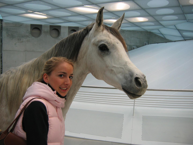 Pferdegeflüster