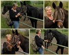 Pferde(ge)flüsterin