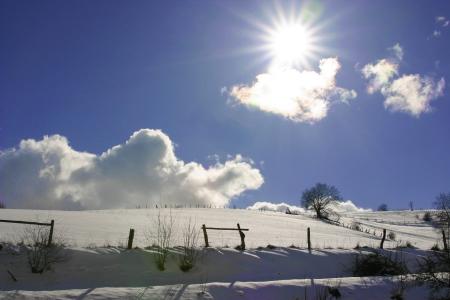 Pferdekoppel im Schnee