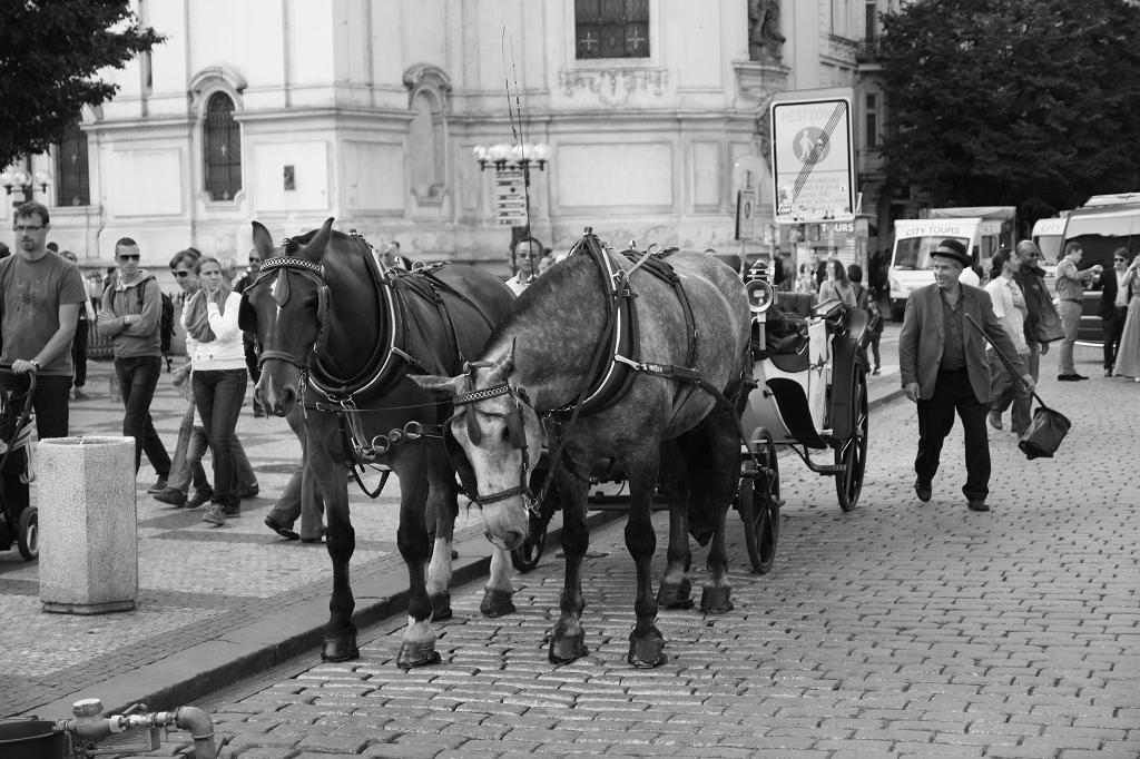 Pferdekutsche Prag