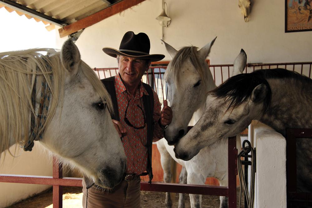 Pferdepflege auf der Manade Gilbert Arnaud