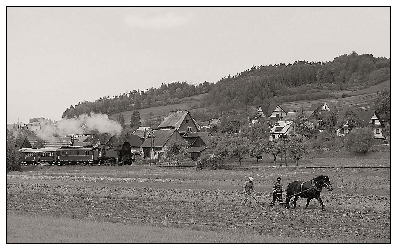 Pferdepflug