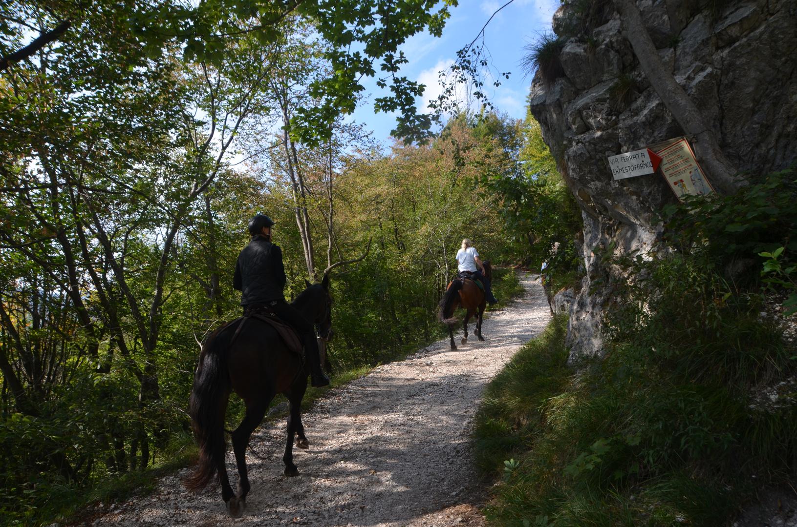 Pferdestärke am Klettersteig ;-)