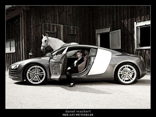 ~Pferdestärke~