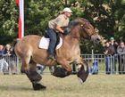 Pferdestark Detmold