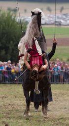 PferdeStark XI