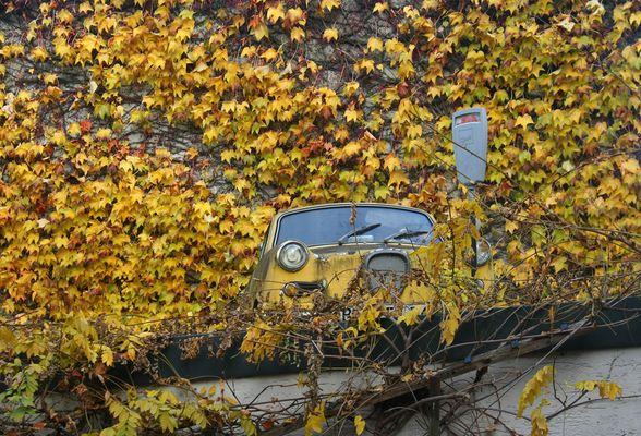 Pfersee im Herbst