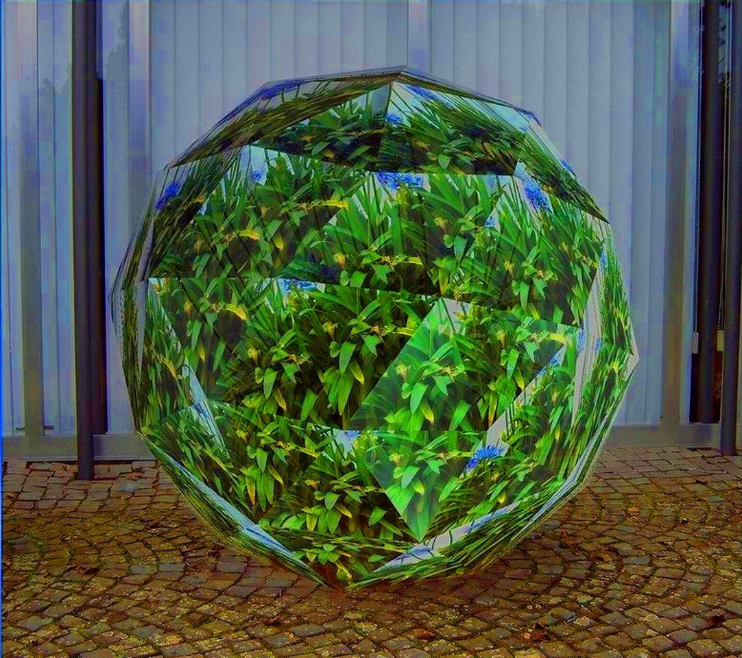 pflanze hinter glas