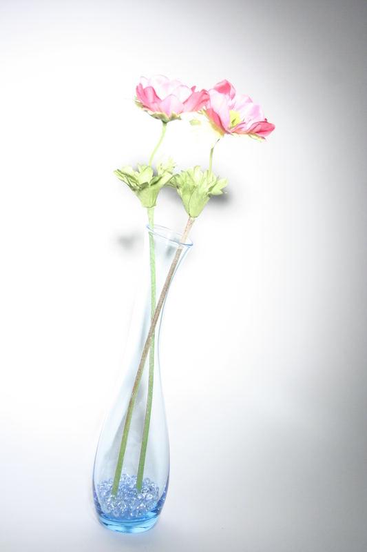 Pflanzen in Vase