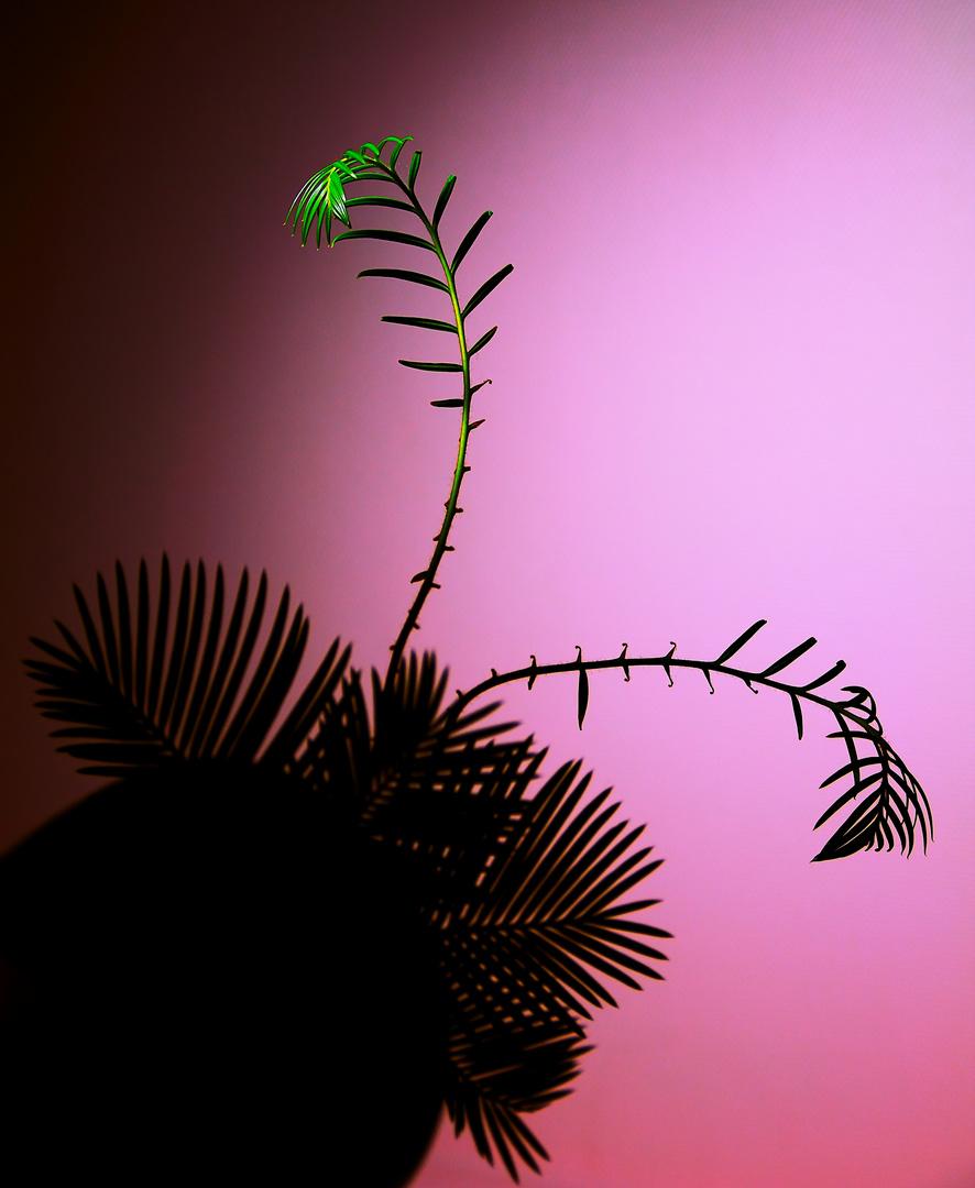 Pflanzenmotiv