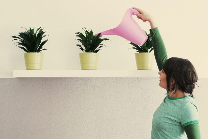 Pflanzenwohnung 2