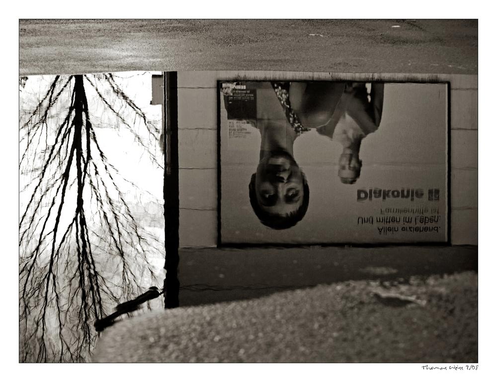 Pfützenfotografie - IV