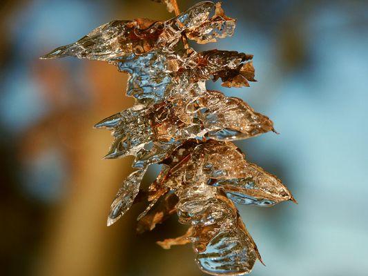 Phantasie in Eis