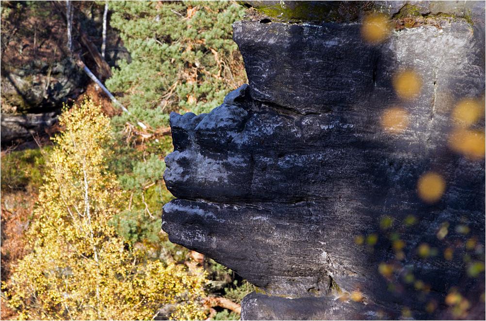 Phantasiewelt Elbsandsteingebirge II
