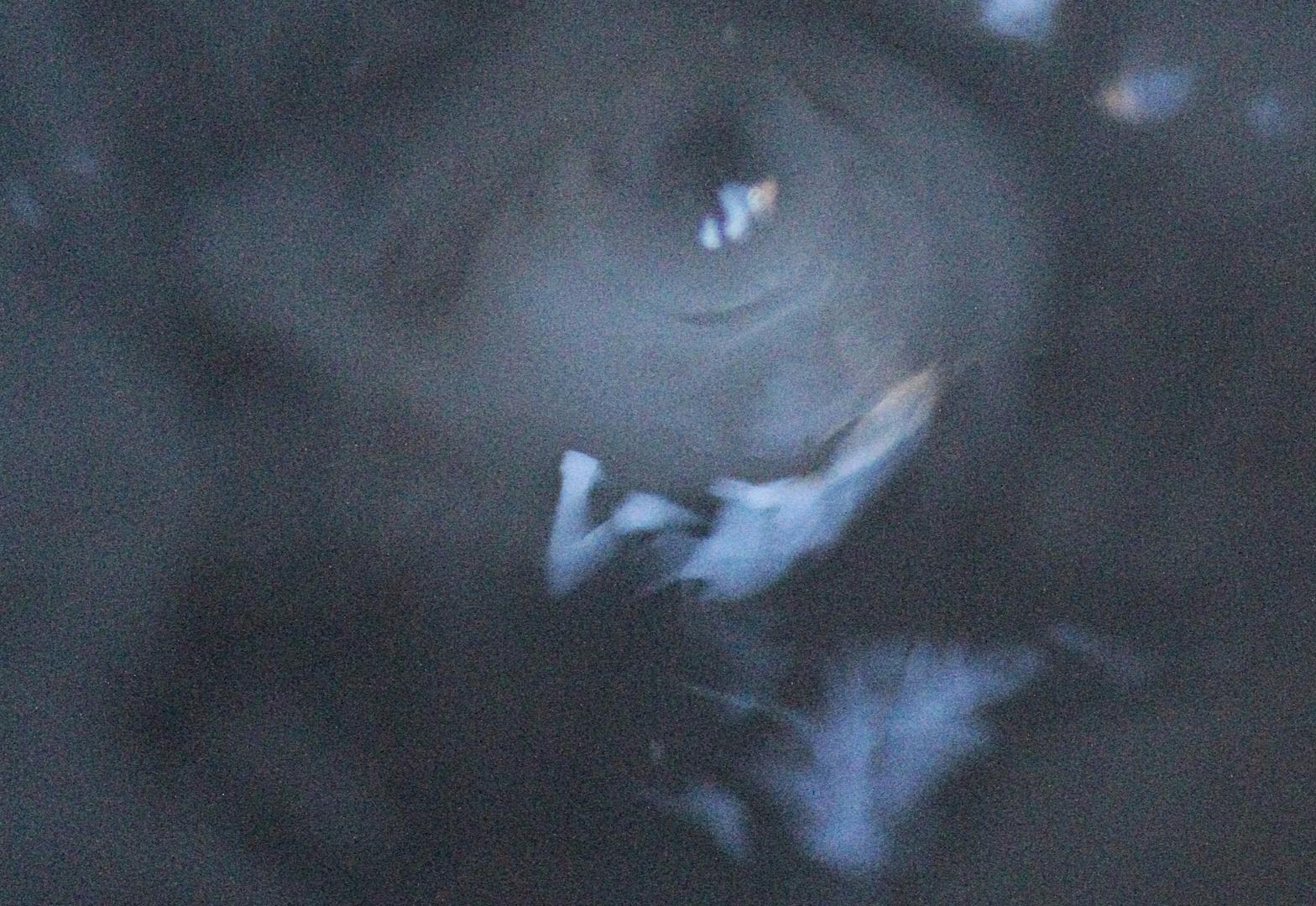 Phantomas eye