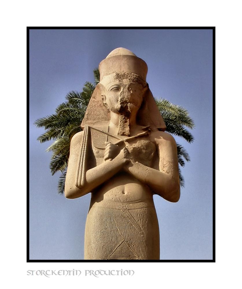 Pharao sine nasi