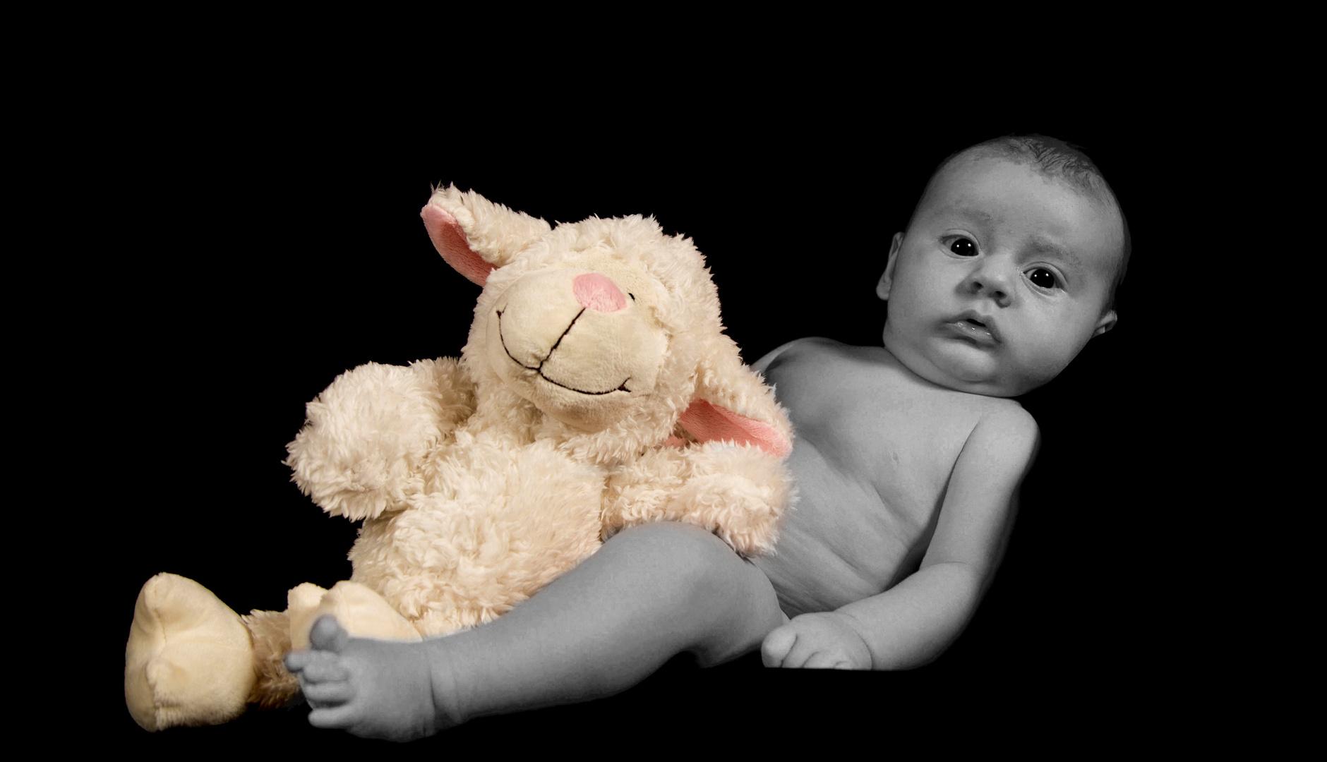 Phil mit Schaf