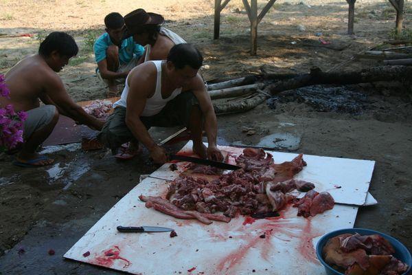 Philippino beim Schwein schlachten