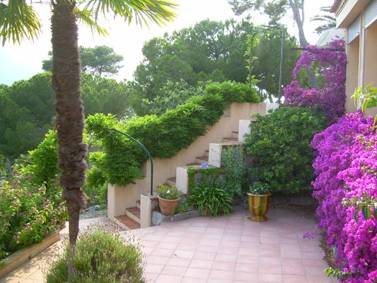 photo d un jardin
