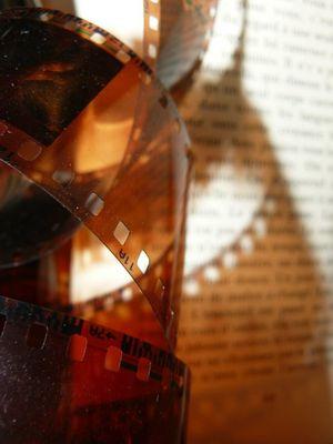 photo et lecture