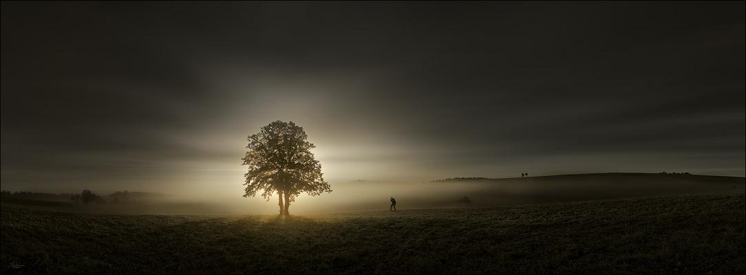 Photograph...