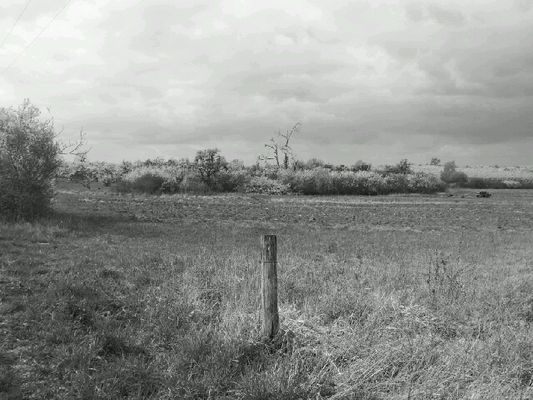photos prise dans mon village