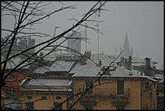 Piatto del giorno.....neve!