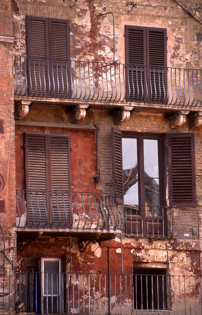 Piazza del Campo (Siena)