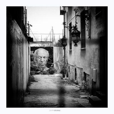 Picasso (para el proyecto de Maria Joao Aucanjo)