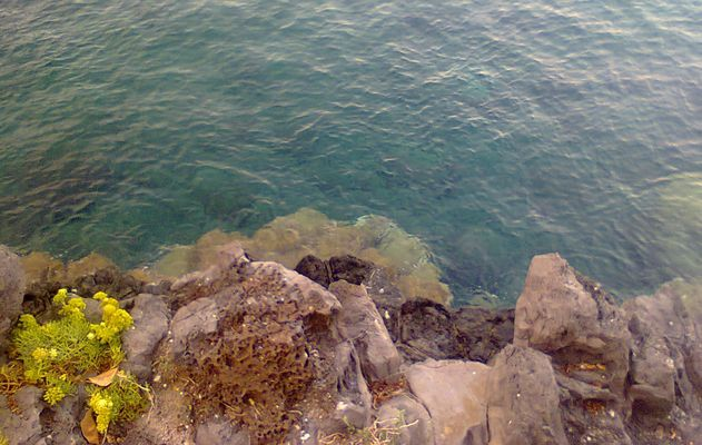 Piccolo pezzo di mare