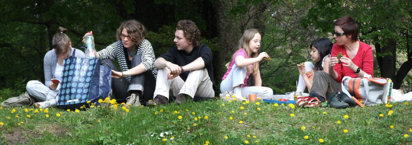 Picknick im botanischen Garten!