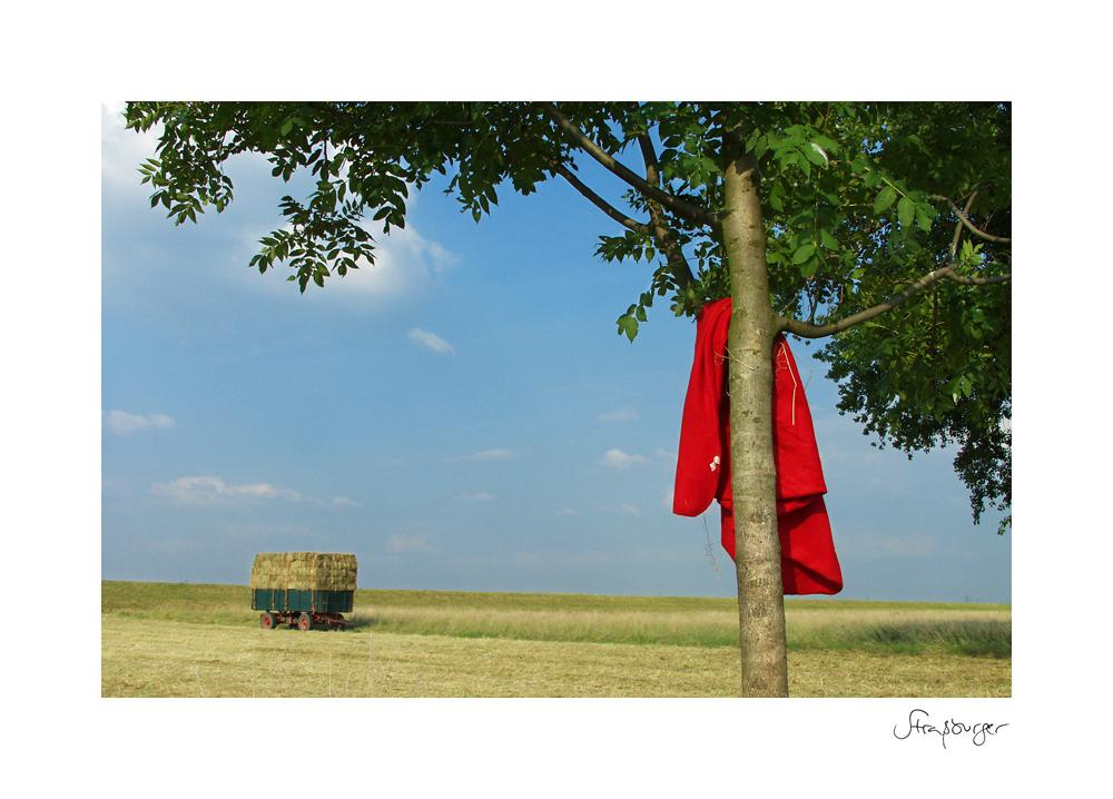 Picknick im Heu …