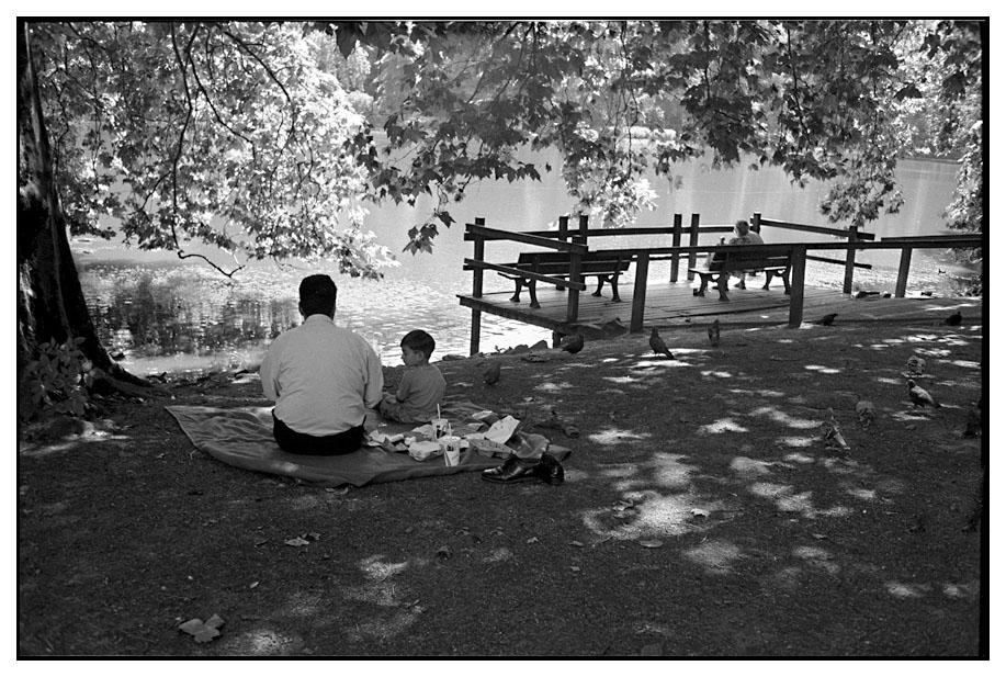 Picknick im Rombergpark