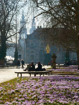 Picknick im Vorfrühling