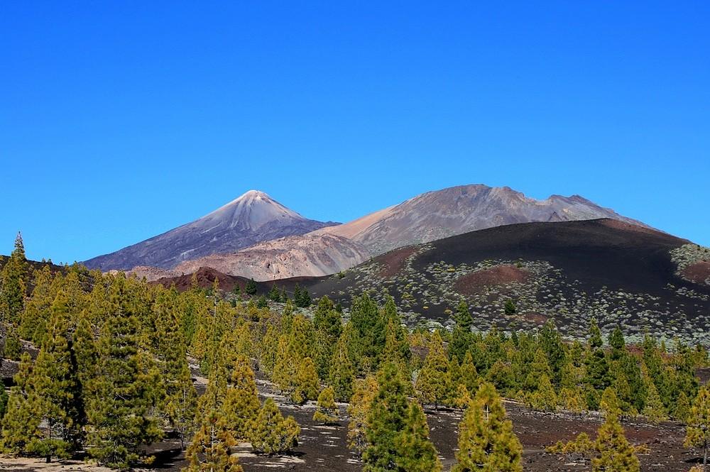 Pico del Teide & Pico Viejo